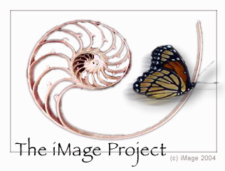 The iMage Project